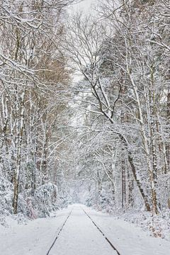 """""""Wegens zware sneeuwval rijden er vandaag geen treinen!"""" van Ivo Schut Fotografie"""
