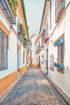de kleuren van Cordoba van Manjik Pictures