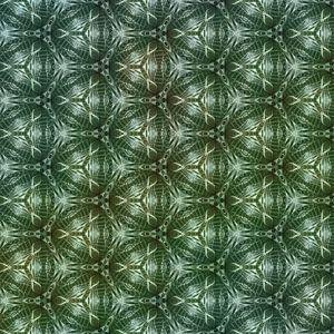 Botanisch patroon