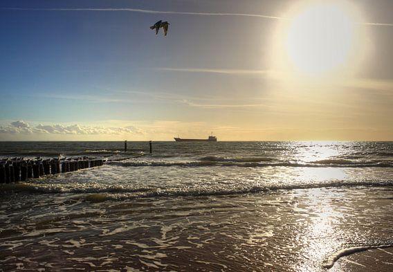 Schip aan de horizon van MSP Photographics