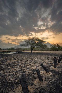 Een dramatische lucht tijdens zonsondergang op de savanne van Baluran Nationaal Park van Anges van der Logt