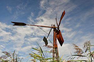Windmolen Weerribben Ossenzijl van Saskia Veenstra