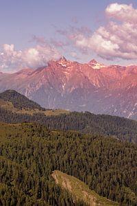 Austria van