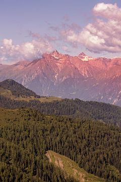 Austria von Boas  van den Berg