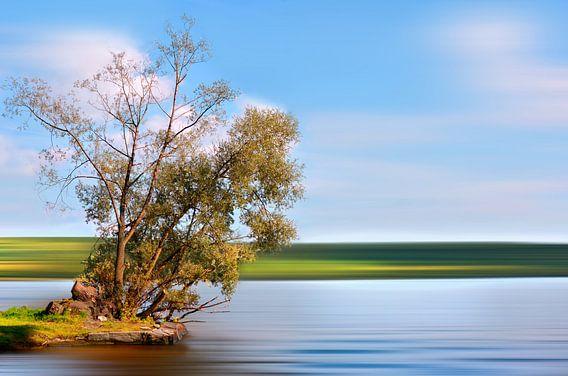 Sommer an der Havel  van Violetta Honkisz