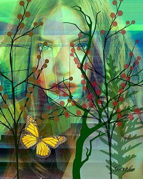 Vlinders in de maag van Gertrud Scheffler