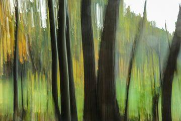 Bos in vertical blur  van Fotografie Jeronimo