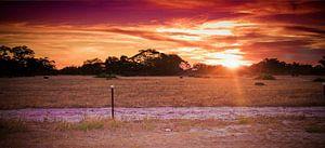Prachtig landschap met zonsondergang