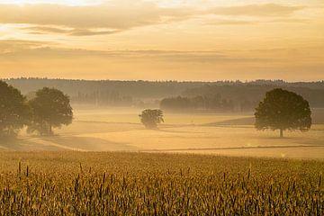 Gouden zonsopgang van Jeroen Kleiberg