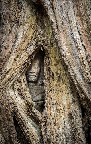 Verborgen boeddha, Cambodja