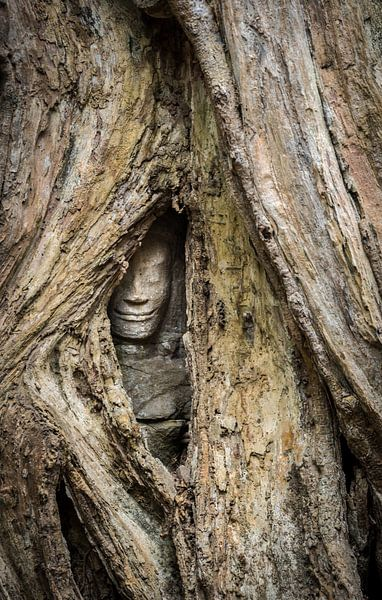 Verborgen boeddha, Cambodja van Rietje Bulthuis