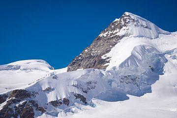 Jungfrau van Ronne Vinkx