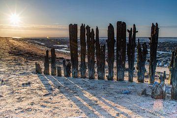 Sonne, Strand und Wattenmeer von Willemke de Bruin