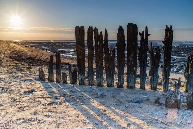 Zon, strand en wad van Willemke de Bruin