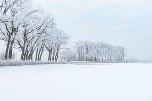 IJskoud winterlandschap tijdens een mooie winterdag in de IJsseldelta