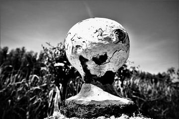 Verwittertes Dukdalf in einer Landschaft mit Schilffedern von Maud De Vries