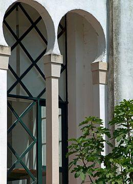 Portugese facade van Ineke de Rijk