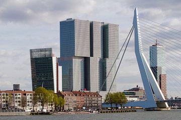 huizen Noordereiland met De Rotterdam en Erasmusbrug van Martin Hulsman