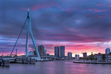 Verbazingwekkende zonsondergang bij de Erasmusbrug Rotterdam van Tony Vingerhoets