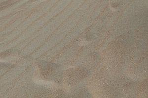 Sporen in het strandzand van