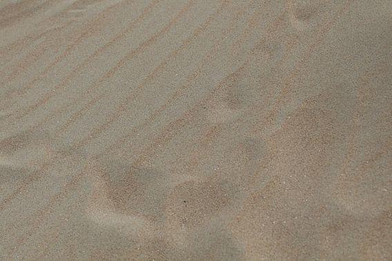 Sporen in het strandzand