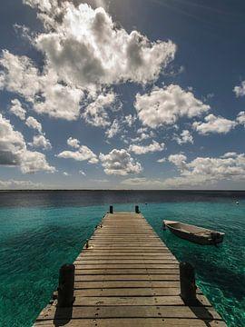 Paradise van Ed van Loon