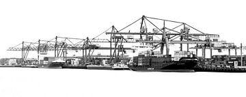 Rotterdamse Haven zwart wit sur Sylvester Lobé