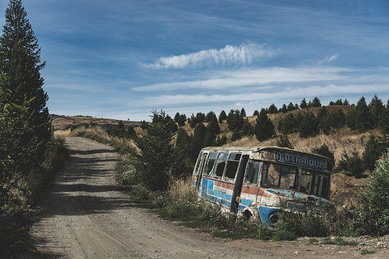 Into the wild van Albert Lamme