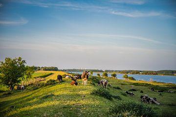 Landschap met zonsondergang van Anita Kabbedijk