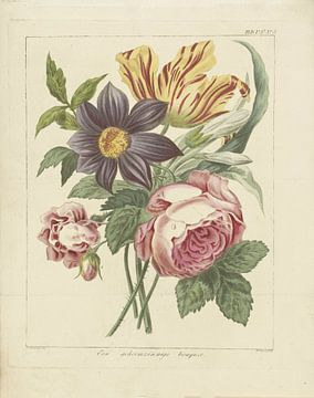 Bouquet de fleurs avec pivoine et tulipe, Dirk Sluyter
