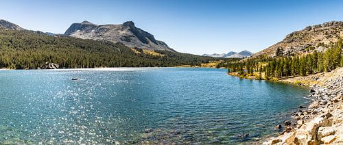 Zonnige Yosemite National park