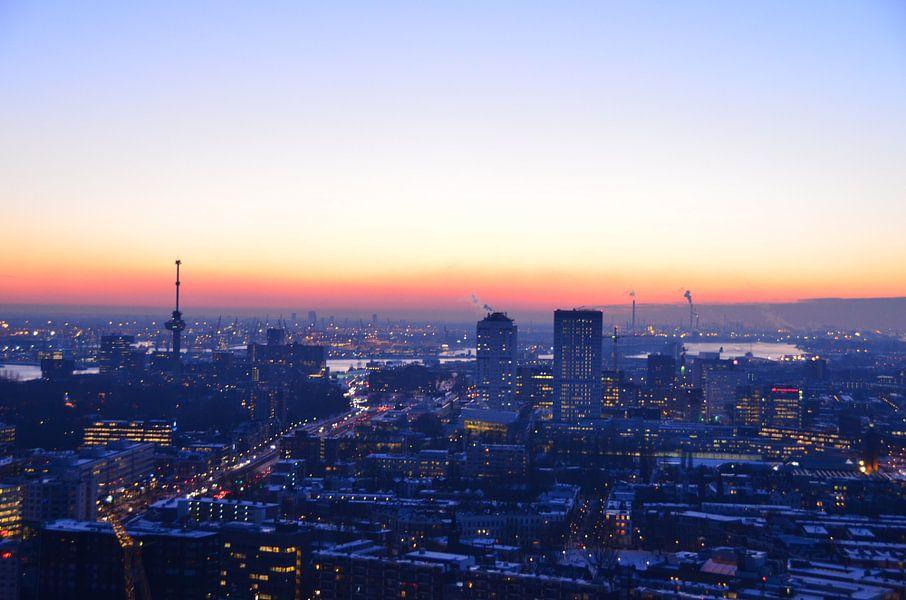 Winter Chill  in Rotterdam