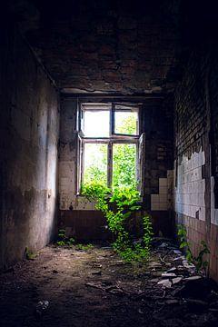 Verlassene Fabrik von D.R.Fotografie