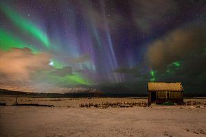 Des lumières magiques dans le ciel sur Hans Vellekoop