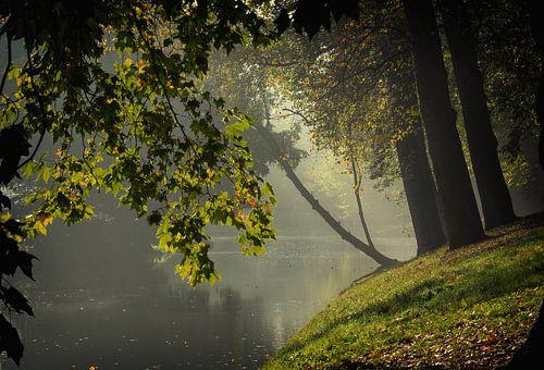 De Stadsbuitengracht ter hoogte van de Maliesingel in Utrecht in de herfst (3) van