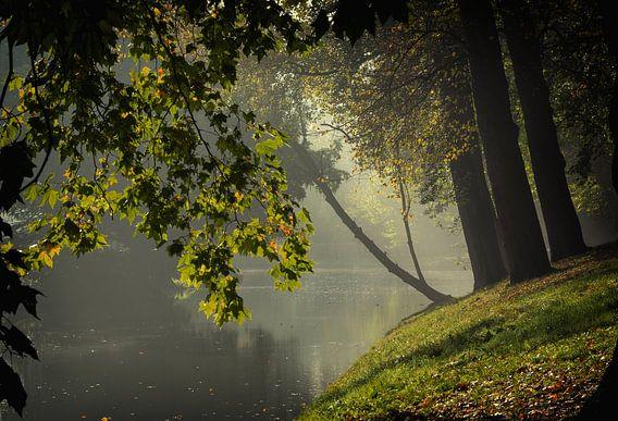 De Stadsbuitengracht ter hoogte van de Maliesingel in Utrecht in de herfst (3)