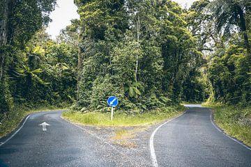 Cross roads van Leon Weggelaar