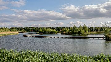 Landschap in stilte van Mirjam Verbeek