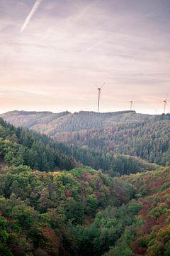 Windmolens in Duitsland van Maureen Materman