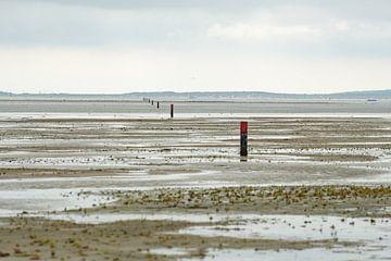 strandpalen op het Groene strand richting Vlieland