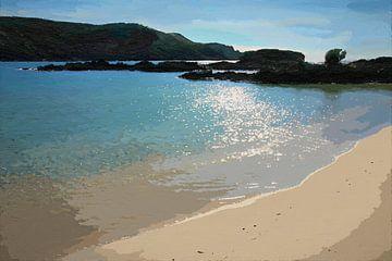 Nieuw Zeeland - Bay of Islands - Silhouetten en Strand - Schilderij