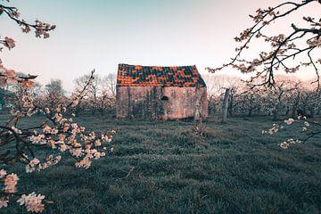 Der kleine Schuppen von Max ter Burg Fotografie