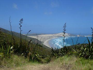 Nieuw Zeeland, Noordereiland van