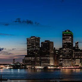 Manhattan - New York City - Brooklyn Heights Promenade van Ronald Westerbeek