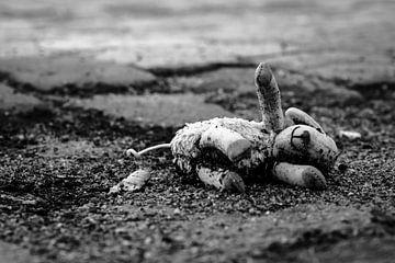Verlorene Schafe von Edwin Muller