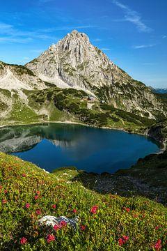 Drachensee in Ehrwald Tirol mit Coburger Hütte und Sonnenspitze. Wandern. Blumen im Vordergrund