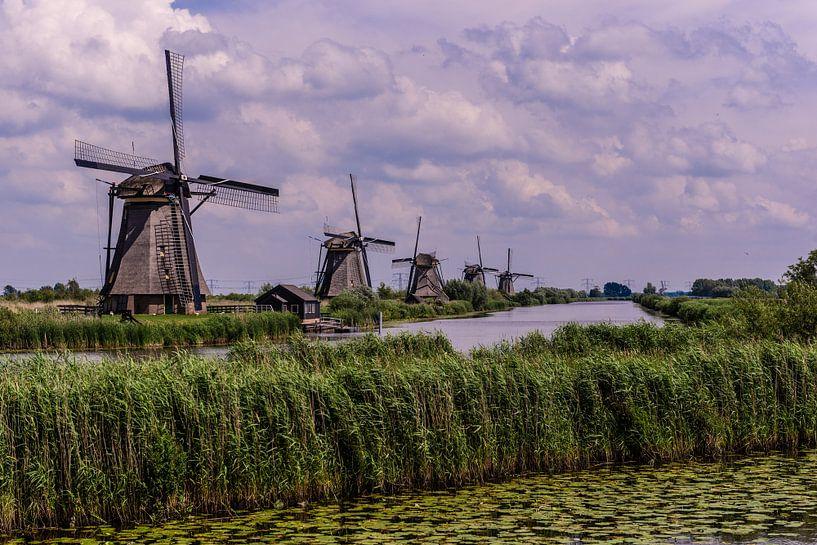 Windmills in Holland van Brian Morgan