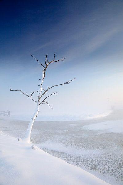 Snowy Farmland van Manuel Meewezen