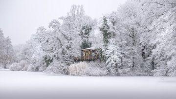 Vogeleiland in Deventer in de eerste Winter sneeuw. van Bart Ros