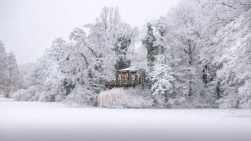 Vogeleiland in Deventer in de eerste Winter sneeuw.
